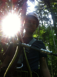 Sonne satt, selbst im Wald